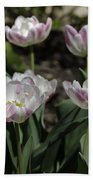Angelique Peony Tulips Squared Beach Towel
