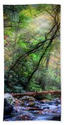 Angels At The River Beach Towel