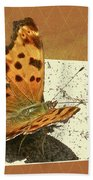 Anglewing Butterfly Beach Towel
