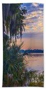Anhinga's Paradise Beach Towel