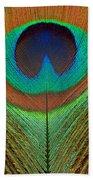 Animal - Bird - Peacock Feather Beach Towel