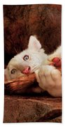 Animal - Cat - My Chew Toy Beach Towel