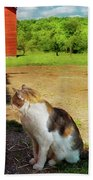 Animal - Cat - The Mouser Beach Towel