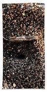 Animal Homes Ants Maybe Beach Towel