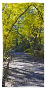 Another Fall In Philadelphia Beach Towel