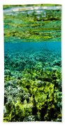 Ant Atoll Reef Beach Towel