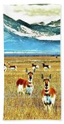 Antelope At Attention Beach Towel