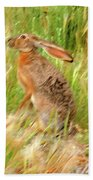 Antelope Jackrabbit Beach Towel