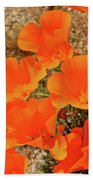 Antelope Valley Poppy Portrait Beach Towel