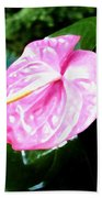 Anthurium Beach Towel