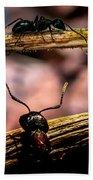 Ants Adventure Beach Towel by Bob Orsillo