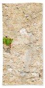 Ants At Oxtankah Beach Towel