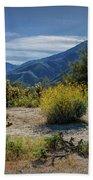 Anza-borrego Desert State Park Desert Flowers Beach Towel