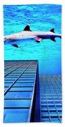 Apex Predator Beach Towel