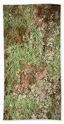 Appalachian Arbor Flora Beach Towel