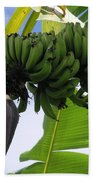 Apple Bananas Beach Towel