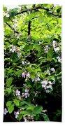 Apple Blossom Digital Painting Beach Towel
