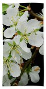 Apple Blossoms 3 Beach Towel