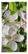 Apple Blossoms Square Beach Towel