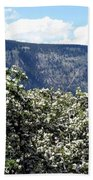 Apple Blossoms Beach Towel by Will Borden