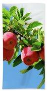 Apples On A Branch Beach Sheet
