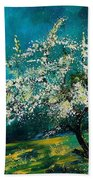 Appletree In Spring Beach Towel