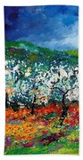Appletrees 4509070 Beach Towel