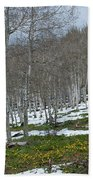 Approaching Spring In The Aspen Forest Beach Towel by Cascade Colors