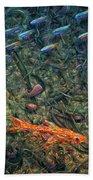 Aquarium 2 Beach Towel by James W Johnson