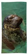 Aquarium Seal  Beach Towel