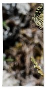 Aquino's Butterflies Beach Sheet