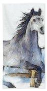 Arabian Horse And Snow - Pa Beach Towel