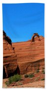 Arches National Park, Utah Usa - Delicate Arch Beach Towel