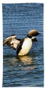 Arctic Loon Beach Towel