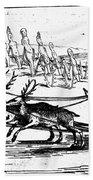 Arctic Sledding, C1618 Beach Towel