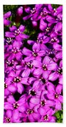 Arctic Wild Flowers Beach Towel