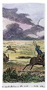 Argentina: Gauchos, 1853. Gauchos Catching Cattle On The Argentine Pampas. Wood Engraving, American, 1853 Beach Towel