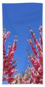 Arizona 3 Beach Towel