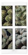 Arizona Cacti  Beach Sheet