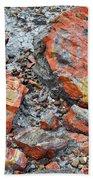 Arizona Petrified Logs Beach Towel by Kyle Hanson
