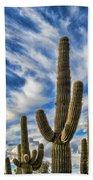 Arizona Saguaro  Beach Towel