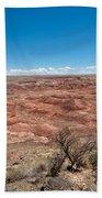 Arizona's Painted Desert Beach Towel