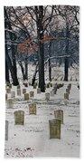 Arlington Winter Snow Beach Towel