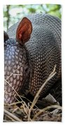 Armadillo In The Woods Beach Towel