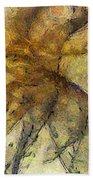 Arraignment Surface  Id 16097-222826-11240 Beach Towel