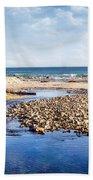 Arroyo Sequit Creek - Steelhead Trout Beach Towel