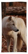 Artic Wolf Beach Towel
