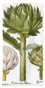 Artichoke, 1613 Beach Towel