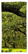 Artistic Live Oaks Beach Towel