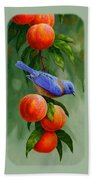 Bird Painting - Bluebirds And Peaches Beach Towel